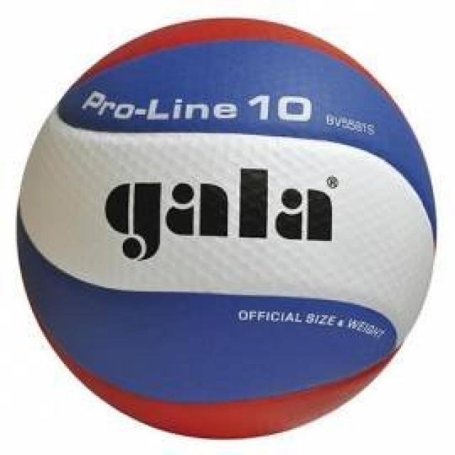 Gala BV5581S Pro Line volejbalový míč